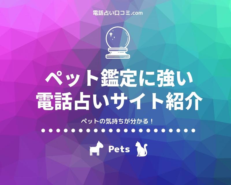 【電話占い】ペット鑑定に強いサイト5選【ペットの気持ち】