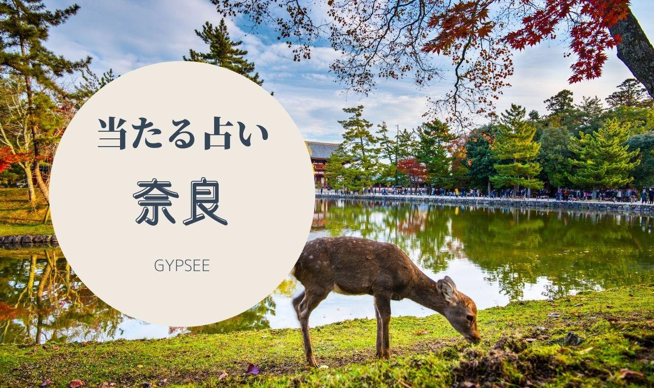 奈良のよく当たる占い!口コミで人気のおすすめ・評判を調査!