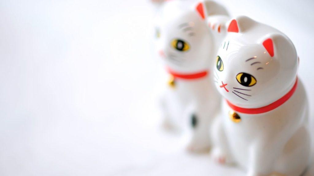 金運を運ぶ!金運の象徴招き猫のモチーフは白猫!
