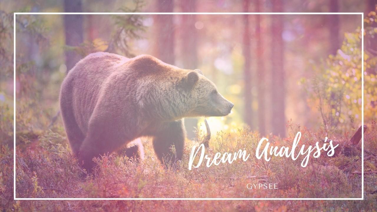 【夢占い】熊の夢の意味と心理!追いかけられる食べられる殺される噛まれる遭遇するなど
