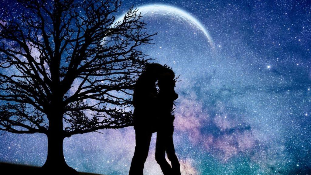 カマキリを見た恋愛のスピリチュアル的な意味