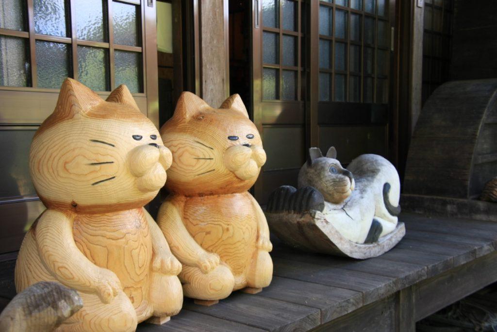猫好きにおすすめのお寺「雲林寺(通称:猫寺)」