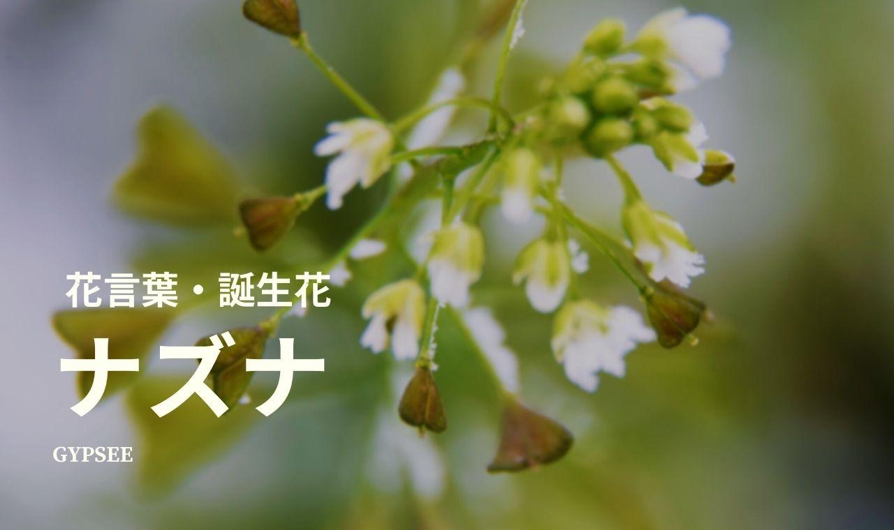 ナズナ(ぺんぺん草)の花言葉・誕生花・育て方・種類