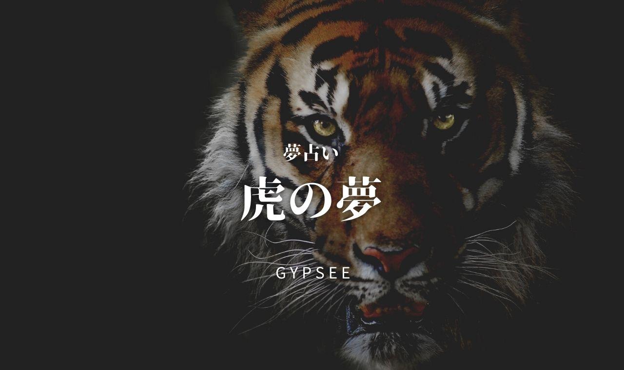 【夢占い】虎の夢の意味40選!