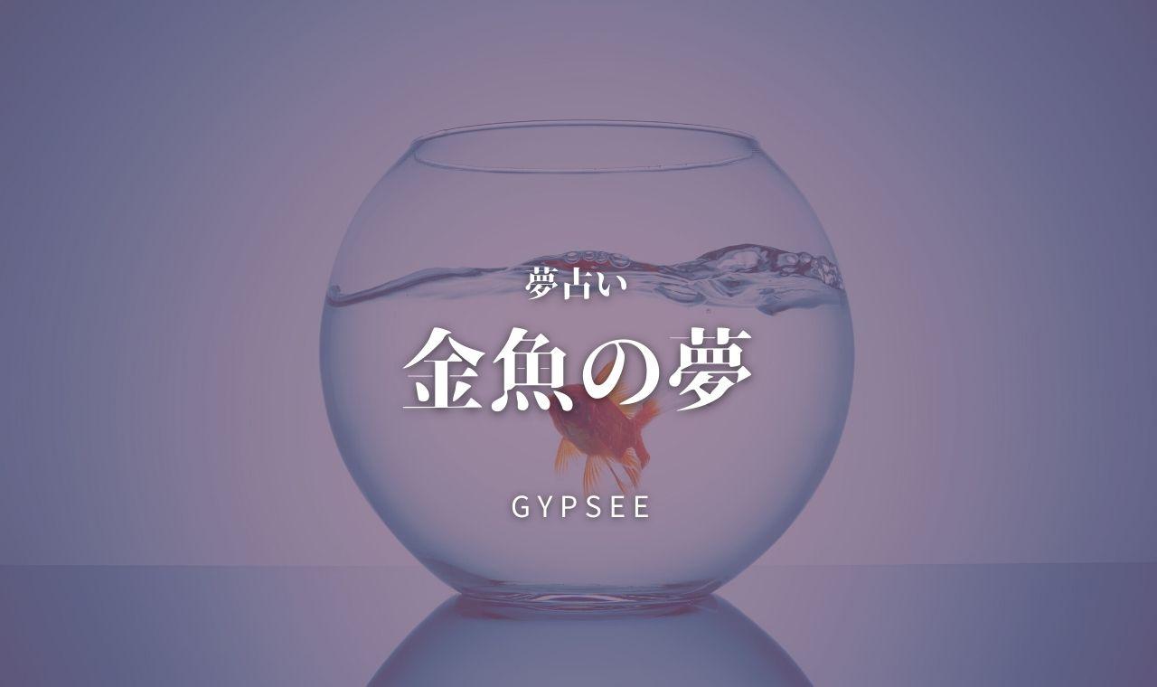 【夢占い】金魚の夢49選!死ぬ・飼う・食べる・出てくる