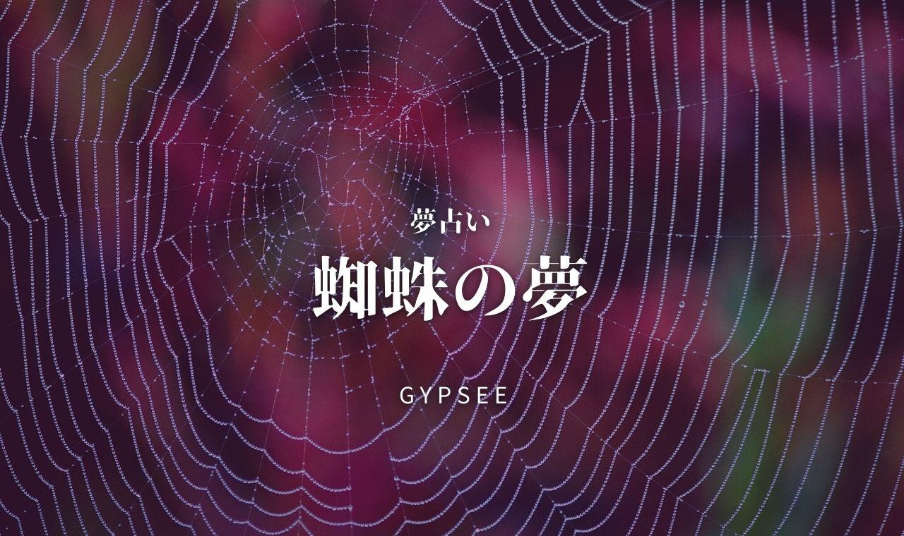 蜘蛛 の 夢