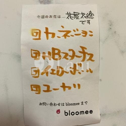 お店からの商品紹介 ブルーミーレビューの画像